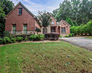 2717 Clearwater Springs Drive, Buford image