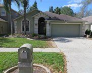 19034 Chemille Drive, Lutz image