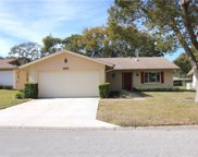 10839 Hachita Drive, Port Richey image