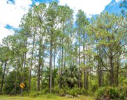 N Goodman Road Unit LOT 313, Kissimmee image