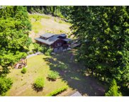 9373 NORTH FORK SIUSLAW  RD, Florence image