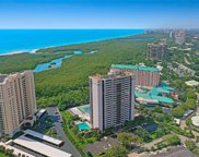 5601 Turtle Bay Dr Unit 401, Naples image