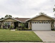 2804 Wendover Terrace, Palm Harbor image