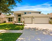 27729 Summer Place Drive, Wesley Chapel image