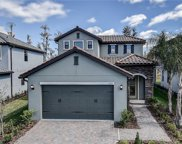 19539 Roseate Drive, Lutz image