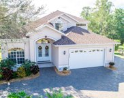 822 Greenview Drive, Apollo Beach image