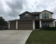 17903 Linkview Dr, Dripping Springs image