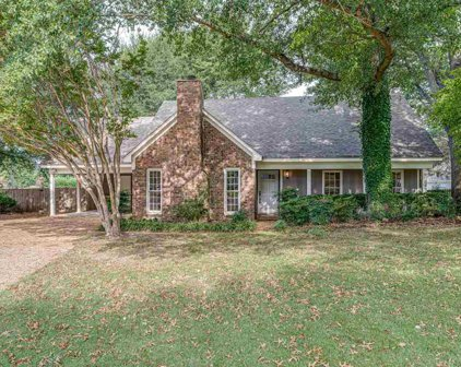 711 Mosswood, Collierville