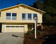 351 Reichling, Pacifica image