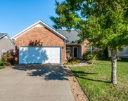 3004 Deer Trail Dr, Spring Hill image
