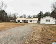 12704 County Road 236, Moulton image