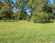 9 Savannah Circle, Cedar Bluff image