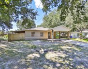 1508 Fish Fin Court, Tampa image