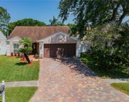 4916 Cypress Trace Drive, Tampa image