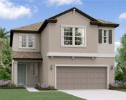 4101 Cadence Loop, Land O' Lakes image