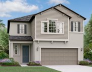 4207 Cadence Loop, Land O' Lakes image