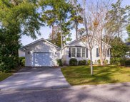 7 Wateree  Court, Beaufort image
