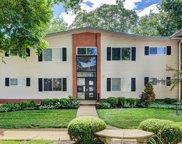 125 E Washington  Avenue Unit #2S, St Louis image