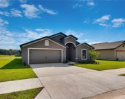 7043 Crested Orchid Drive, Brooksville image