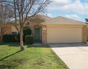 11824 Ponderosa Pine Drive, Fort Worth image
