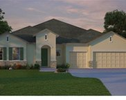 13201 Blossom Valley Drive, Clermont image