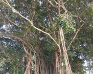 1100 D Road Unit #(5 Acres), Loxahatchee Groves image