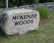 10 McKenzie Woods Road, Franconia image