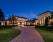 3292 Green Dolphin Ln, Naples image