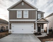 860 Hawthorn Ln, Odenville image
