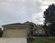 11784 New Haven Drive, Spring Hill image