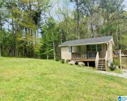 1970 Sanie Road, Odenville image