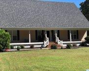 114 Bow Range Road, Guntersville image