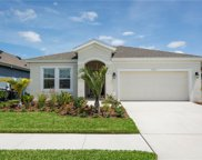 7420 Sungold Meadow Court, Apollo Beach image