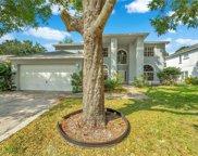 1264 Wyndham Pine Drive, Apopka image