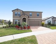 12818 Satin Lily Drive, Riverview image