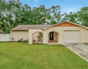 4607 Tampa Downs Boulevard, Lutz image