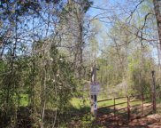 1519 County Road 14, Myrtle image
