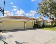 17707 Currie Ford Dr., Lutz image