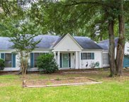 298 Swamp Fox  Drive, Fort Mill image