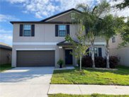 10120 Rose Petal Place, Riverview image