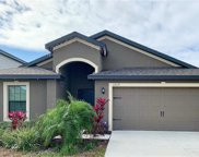 11829 Winterset Cove Drive, Riverview image