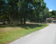 23734 Forest View Drive, Land O' Lakes image