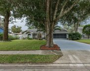 8134 Hutchinson Drive, New Port Richey image