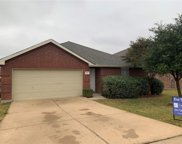 1405 Whitewater Drive, Little Elm image