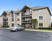 14131 Norwich Lane Unit #301, Orland Park image