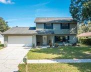 14913 Knotty Pine Place, Tampa image
