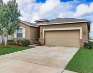 904 Peregrine Hill Place, Ruskin image
