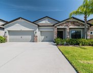 11438 Carlton Fields Drive, Riverview image