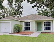 6930 Wildwood Oak Drive, Tampa image