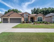 11336 American Holly Drive, Riverview image
